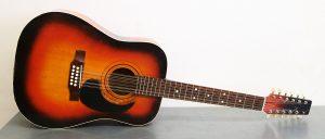 Akustická dvanácti strunná kytara
