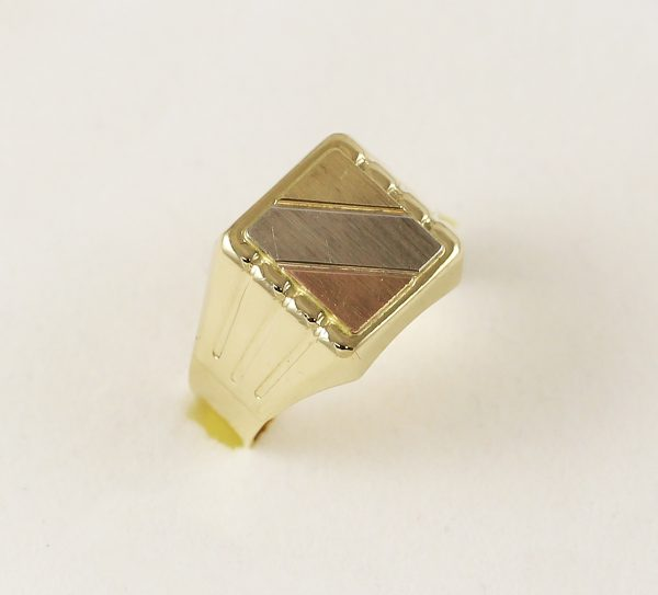 Prsten pánský kombinace